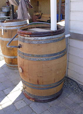 Rain Barrel from reclaimed recycled green used oak wine barrels